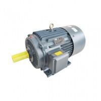 江苏三相异步电动机 YE2-160L-6极全新铜电机马达