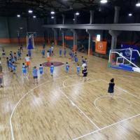体育运动木地板 室内篮球场地板 实木运动木地板 康隆地板