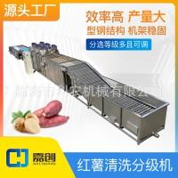 304 不锈钢红薯清洗分级机 土豆分选机 水果加工设备 源头工厂