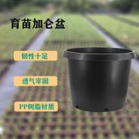 大号黑色15加仑盆园艺盆栽景树苗果树花盆一件代发