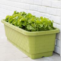 创意种菜盆阳台花盆 长方形落地自吸水简约塑料花盆