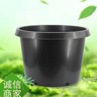 基地果树黑色花盆黑色防老化耐用圆形加仑花盆