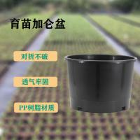矮胖5五加仑育苗园艺黑色加仑花盆 抗老化塑料花盆