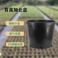 供矮胖10加仑黑色花盆 牢固透气园艺盆栽树苗加仑盆