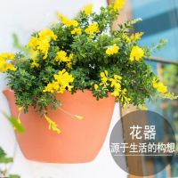 塑料创意园艺阳台墙面绿萝吊兰自吸水挂盆加厚