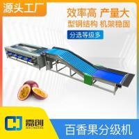 百香果分级机分选机果蔬加工设备源头工厂可定制生产