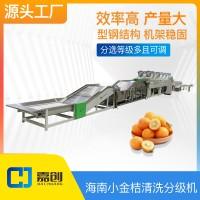 海南青金桔清洗分级机分选机筛选设备水果分大小工厂可定制