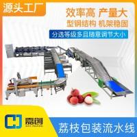 广东荔枝包装流水线分级机分选设备海南广西分拣机源头工厂效率高