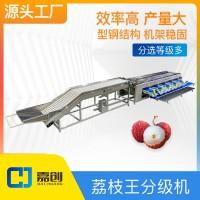 荔枝王分级机分选设备果蔬加工海南广东广西妃子笑筛选机尺寸可调
