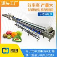 水果分级机牛油果重量分选设备双线筛选机一机多用可调源头工厂