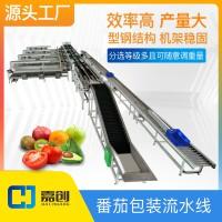 番茄包装分级机重量分选机可调一机多用水果分拣机设备西红柿筛选