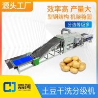 土豆干洗分级机红薯筛选机马铃薯分拣设备源头工厂水果分选机